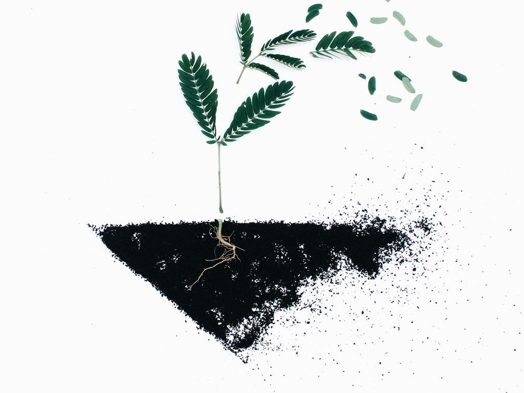Healing and Restoration